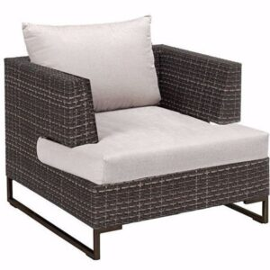 Aconitum Accent Chairs